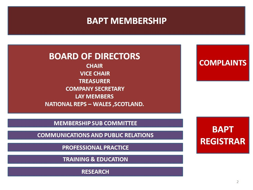General information the british association of play therapists the board of directors pooptronica Choice Image